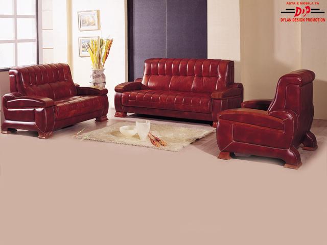 Canapele ieftine canapele din piele paturi de piele for Canapele extensibile de o persoana